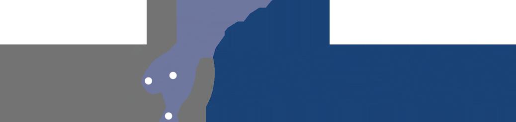 Hailteam Logo